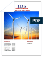 Final Report on Wind Turbines