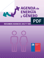 Agenda de Energia y Género - Resumen