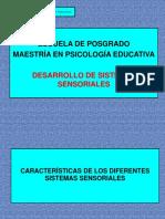Clase 2 Desarrollo Sensorial