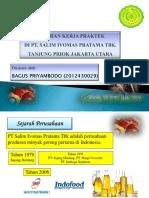 337821306-ppt-bgs.pptx