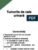 Tumorile de Cale Urinara 2015