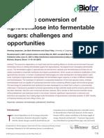 Enzymatic conversion of lignocellulose into fermentable sugars