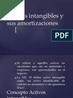 14 Activos Intangibles