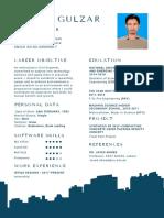 Faisal's Resume