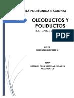 Consulta - Detección de Fugas - Cristhian Gutiérrez