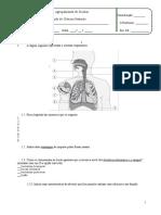 Teste de Avaliação Sobre Os Sistemas Respiratório e Digestivo