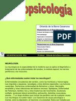 IPLA Neuropsicologia (1)