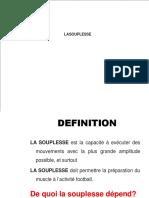 La Souplesse Lic C 2015 Stag