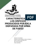 Caacteristicas de Orificios Producidos Por Bala