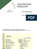 Contracción Muscular - Universidad Peruana