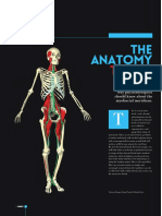 251249353-Anatomy-Trains.pdf