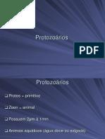 Aula Protozoarios