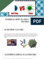 Diferencias Entre Los Virus y Bacterias