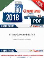 Rebecca Guimarães - Retrospectiva Janeiro 2018