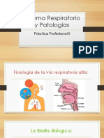 Sistema Respiratorio y Patologias