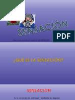 PSICOLOGIA SENSACIÓN&PERCEPCION