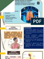 Farmacología Del Sistema Respiratorio - Seminario x