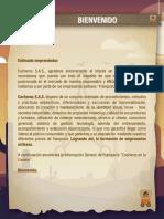Informacion Franquicia Cocheros