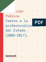 2018 Libro SADP_CaminoProfesionalizacionEstado