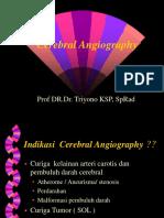 Cerebral Angiography2