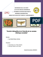 Palomilladeloscerealessitotrogacerealella 130704203418 Phpapp01 (1)