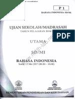 UN 2017 SD B Ind.pdf