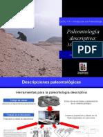 Clase7_Paleontologia_descriptiva