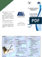 Contador Publico Plan