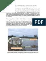 iMportancia de Las Microalgas