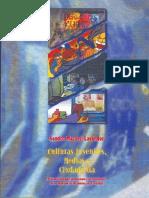 Culturas_juveniles_medios_y_ciudadania_e (1).pdf
