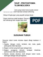 Paleontologi2015-08.pptx