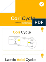 Cori Cycle