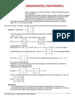 Fiche Technique 5 - Diagonalisation Trigonalisation