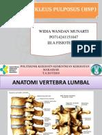 Anatomi Dan Fisiologi HNP