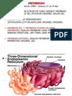 Membran Cell i - 2012 Fk