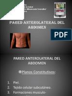 Abdomen Pared Anterolateral