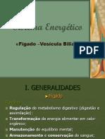 Sistemas Energéticos Fígado –Vesícula Biliar (4).ppt