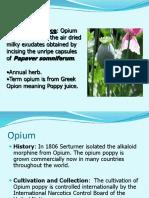 opium-160604163652 (1)