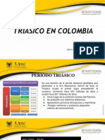 Triasico en Colombia