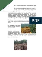 CARACTERISTICAS DE LA CONSERVACION DE LA BIODIVERSIDAD EN EL PERU)luis=