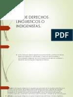 Ley de Derechos Linguisticos o Indigenistas