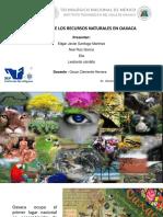 Panorama de Los Recursos Naturales en OAXACA