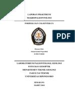 Laporan Praktikum Makropaleontologi Porifera Dan Coloenterata