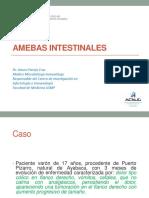 Amebas Intestinales