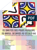 Os direitos dos povos indígenas no Brasil - desafios no século XXI