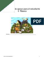 lenguaje_5basico