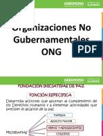 Presentacion Ong