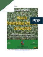 Hacia la Sostenibilidad Ambiental del Desarrollo