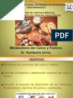 19 Metabolismo Del Calcio y Fósforo.