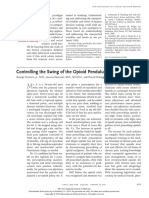 Controlling the Swing of the Opioid Pendulum